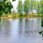 En cosa de horas desaparecen un lago de 20 metros de profundidad y todos sus peces