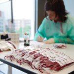 Japoneses inventaron sangre artificial compatible